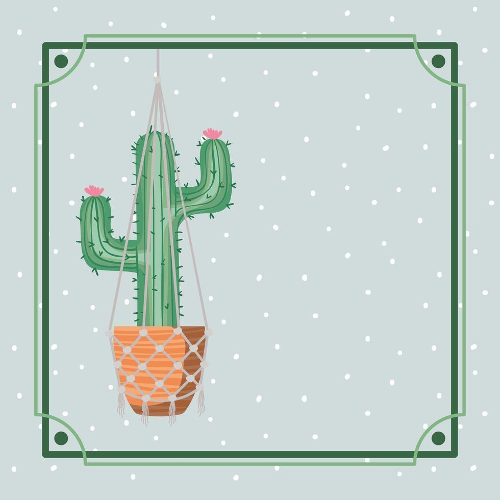 marco con planta de interior de cactus colgando en macramé vector