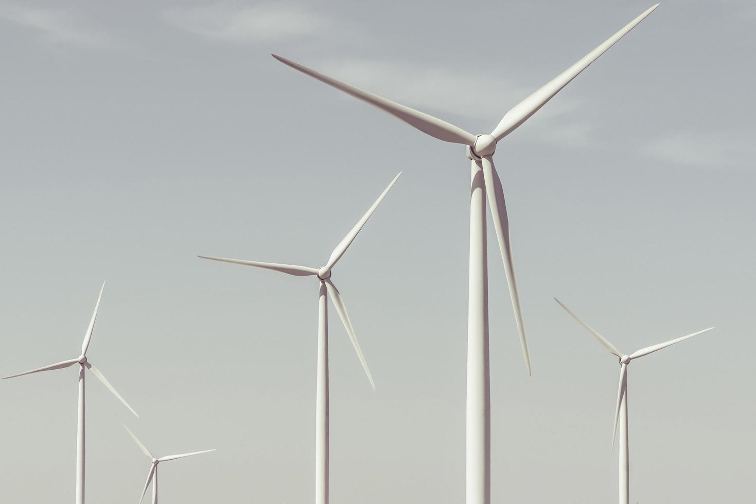 turbinas eólicas en un día de verano foto