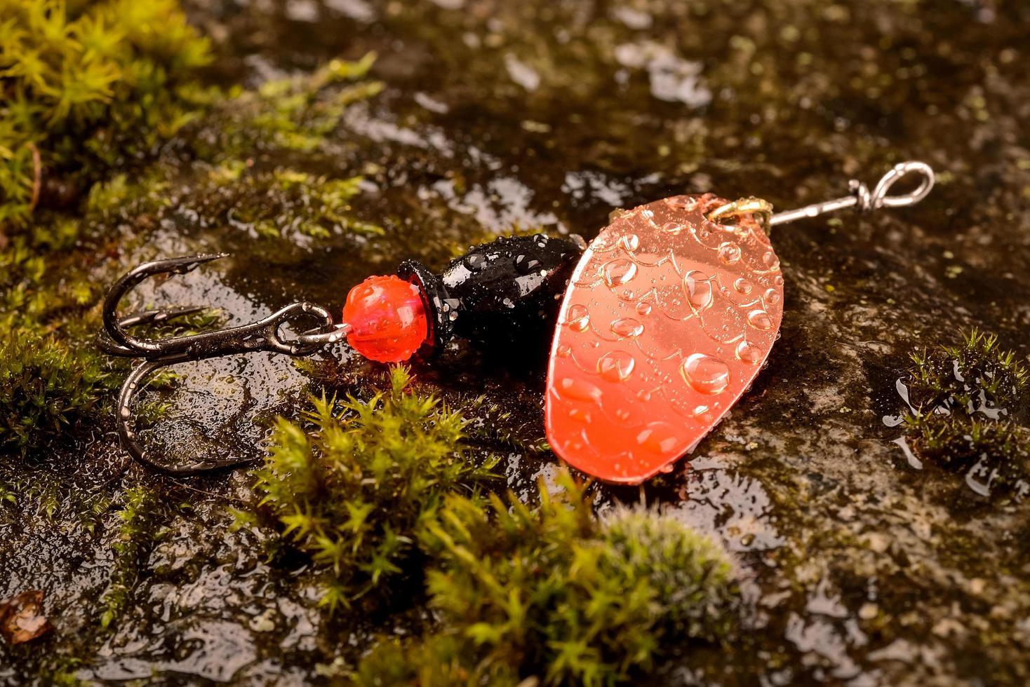 Señuelo de cuchara de pesca en piedra mojada con musgo foto