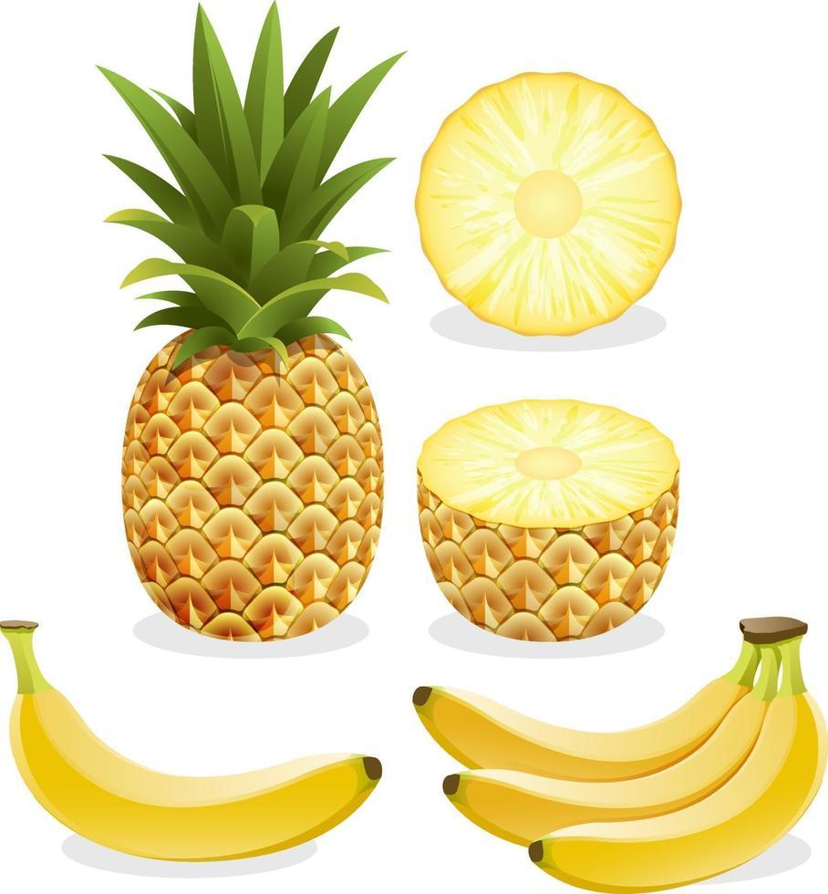 piña y plátano. ilustración vectorial. vector