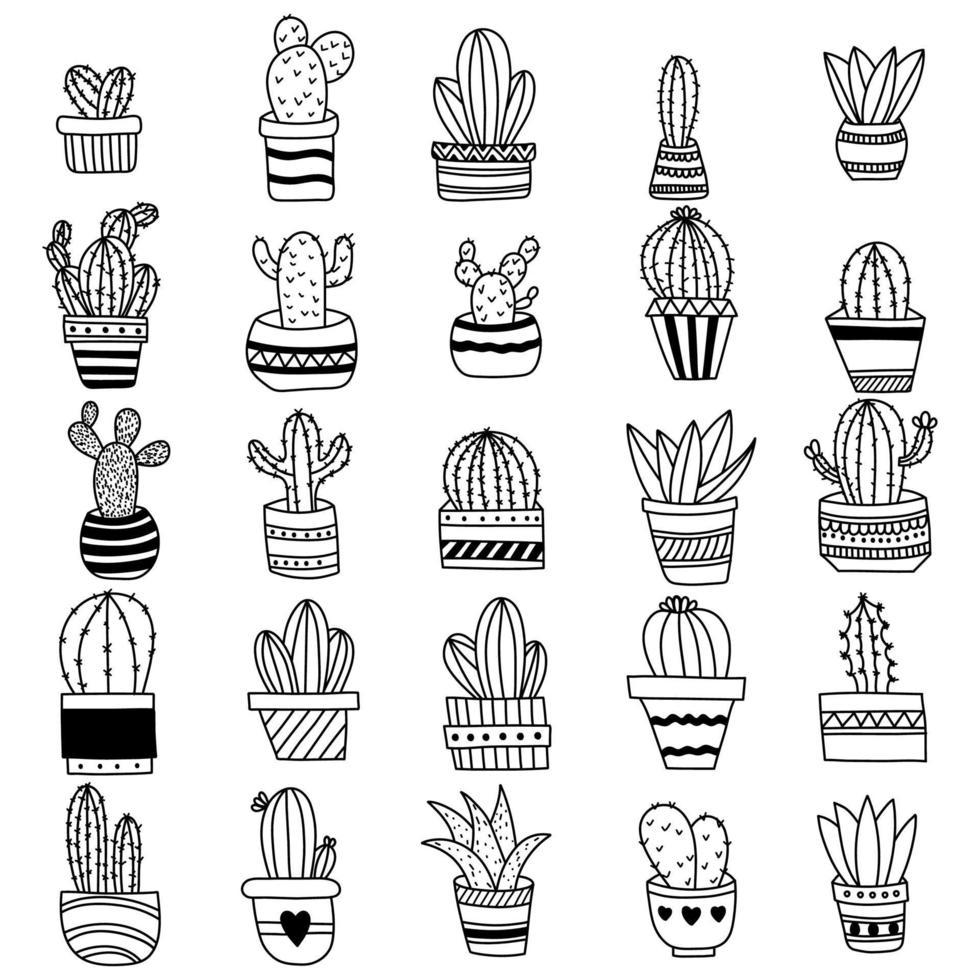 conjunto de cactus de contorno dibujado a mano vector