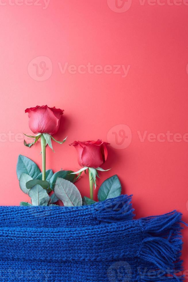 rosas sobre un fondo rojo, concepto para el día de san valentín foto