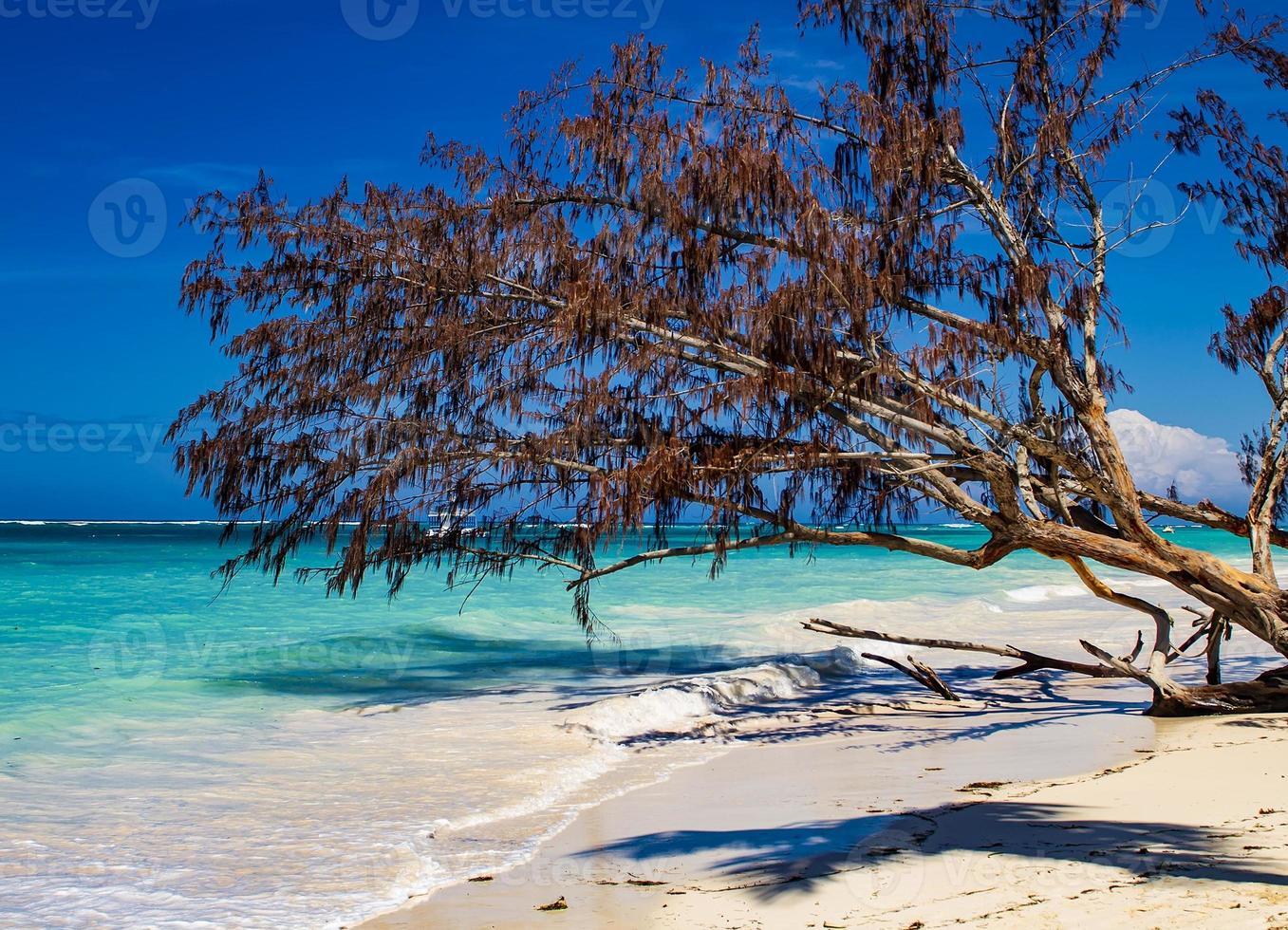 playa tropical en el mar caribe foto