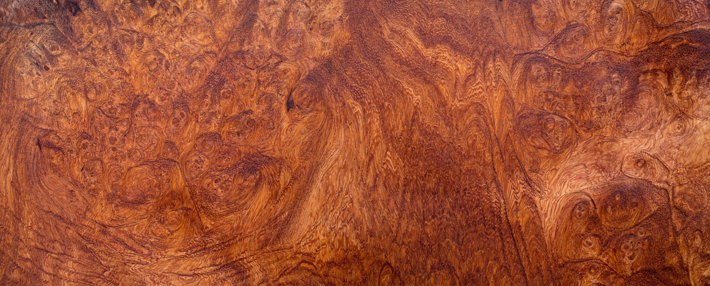 Natural burl wood texture background photo