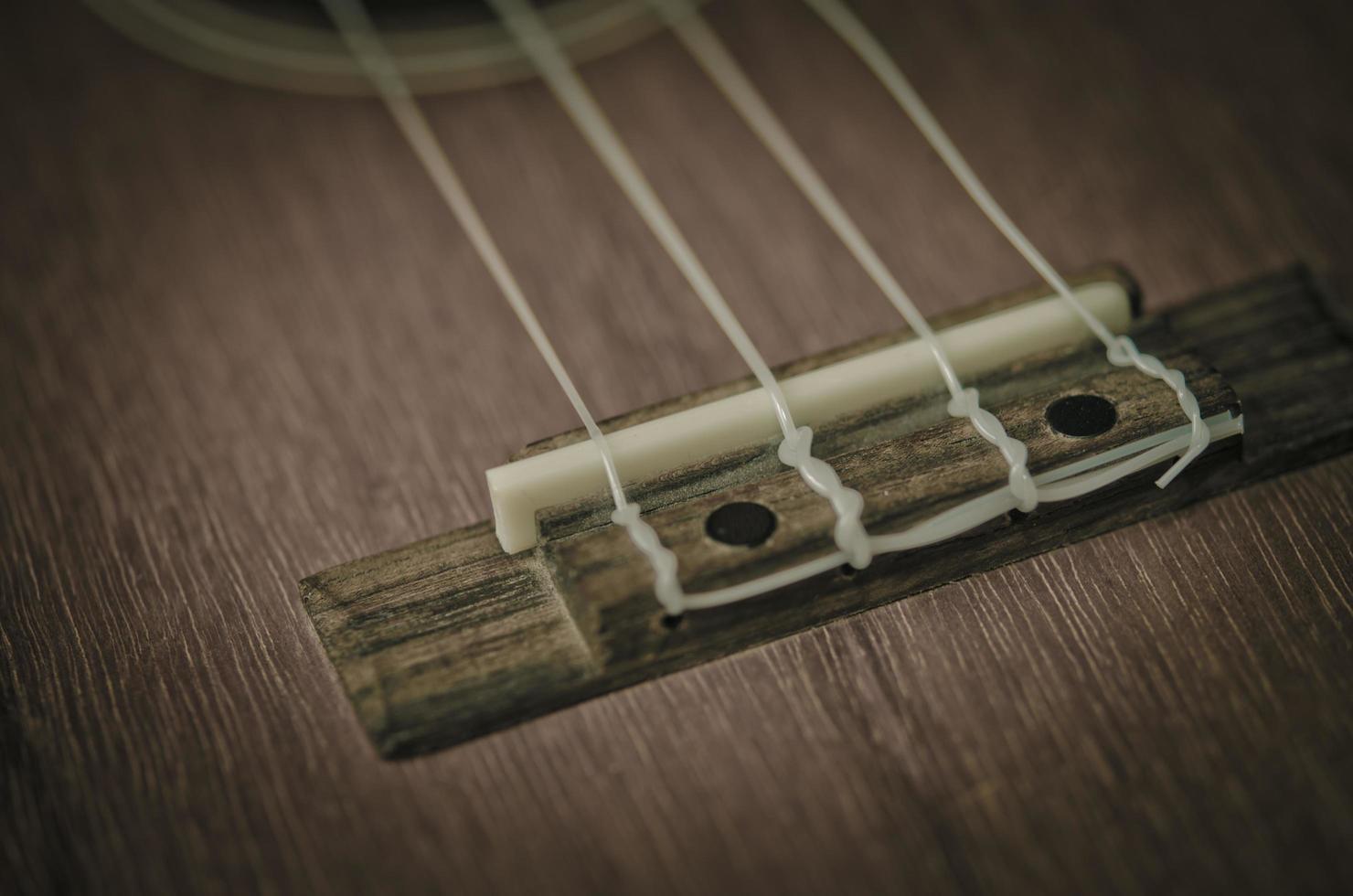 primer plano de la cuerda del ukelele foto