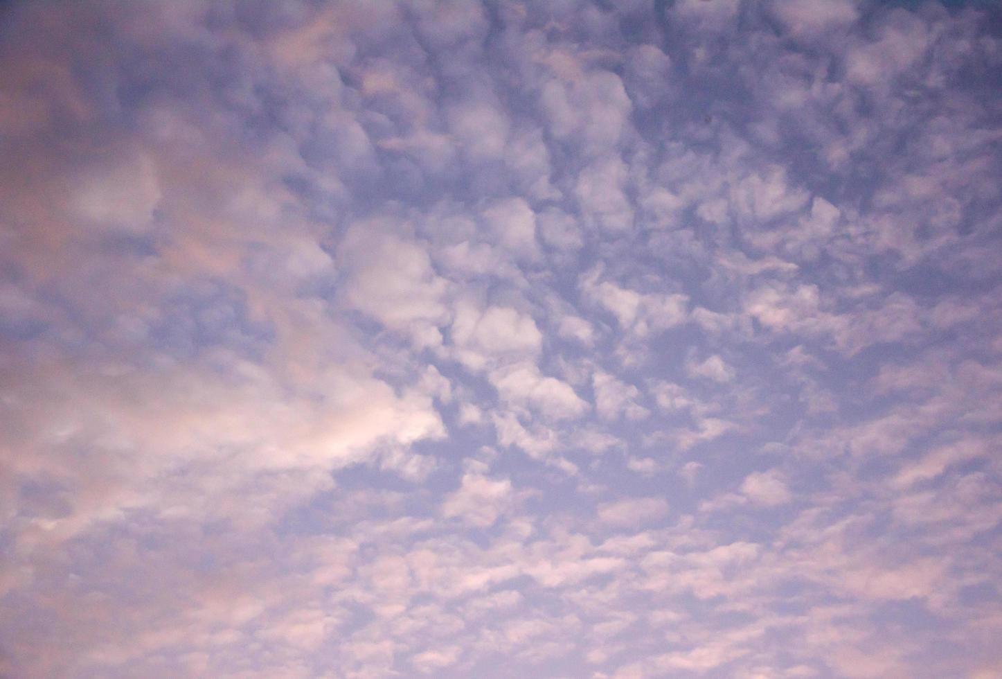 nubes rosadas al atardecer foto