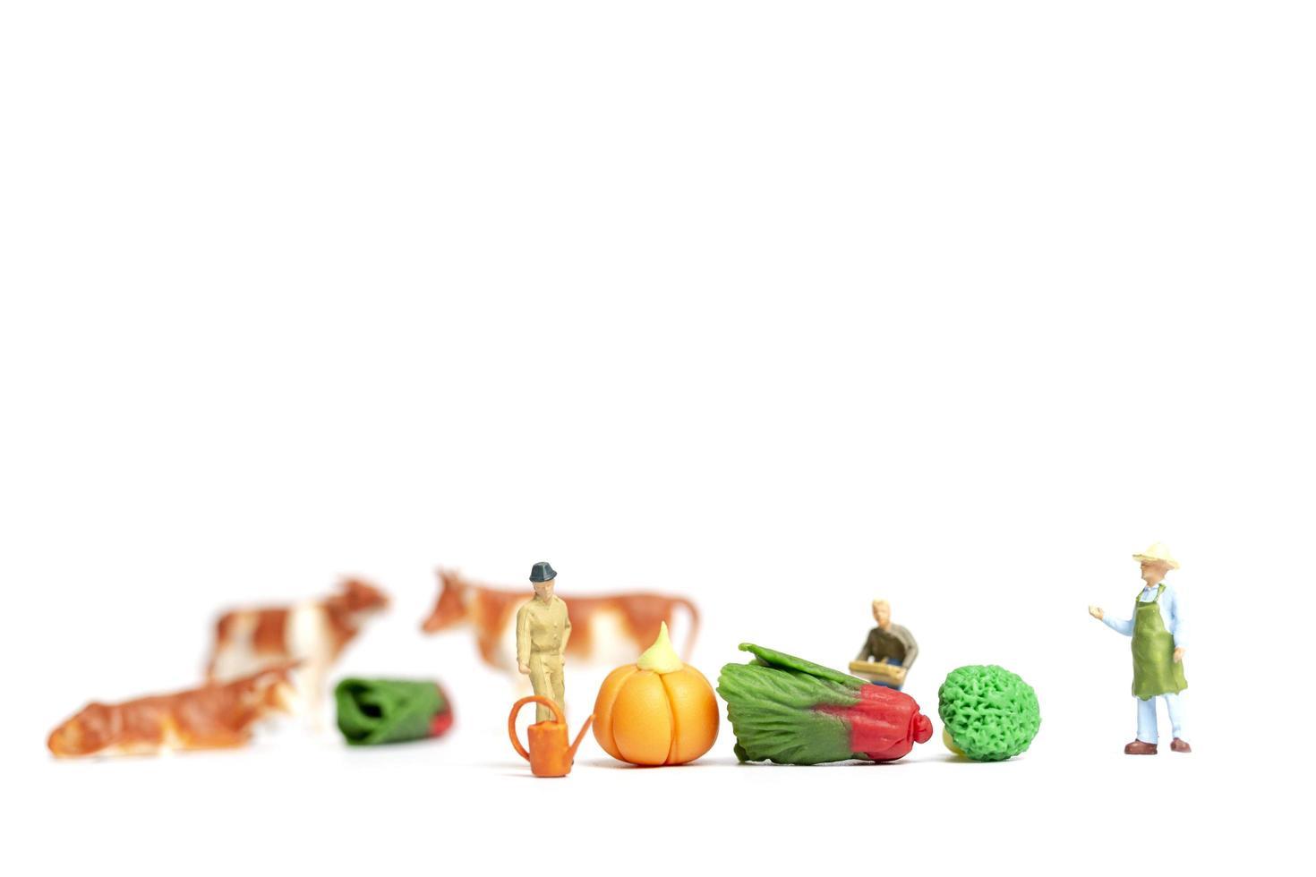 Jardineros en miniatura cosechando verduras sobre un fondo blanco, concepto de agricultura foto