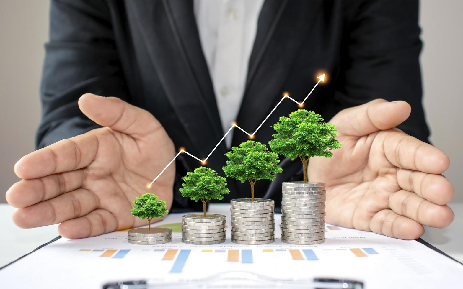 Green trees growing on coins increases, concept of business growth photo