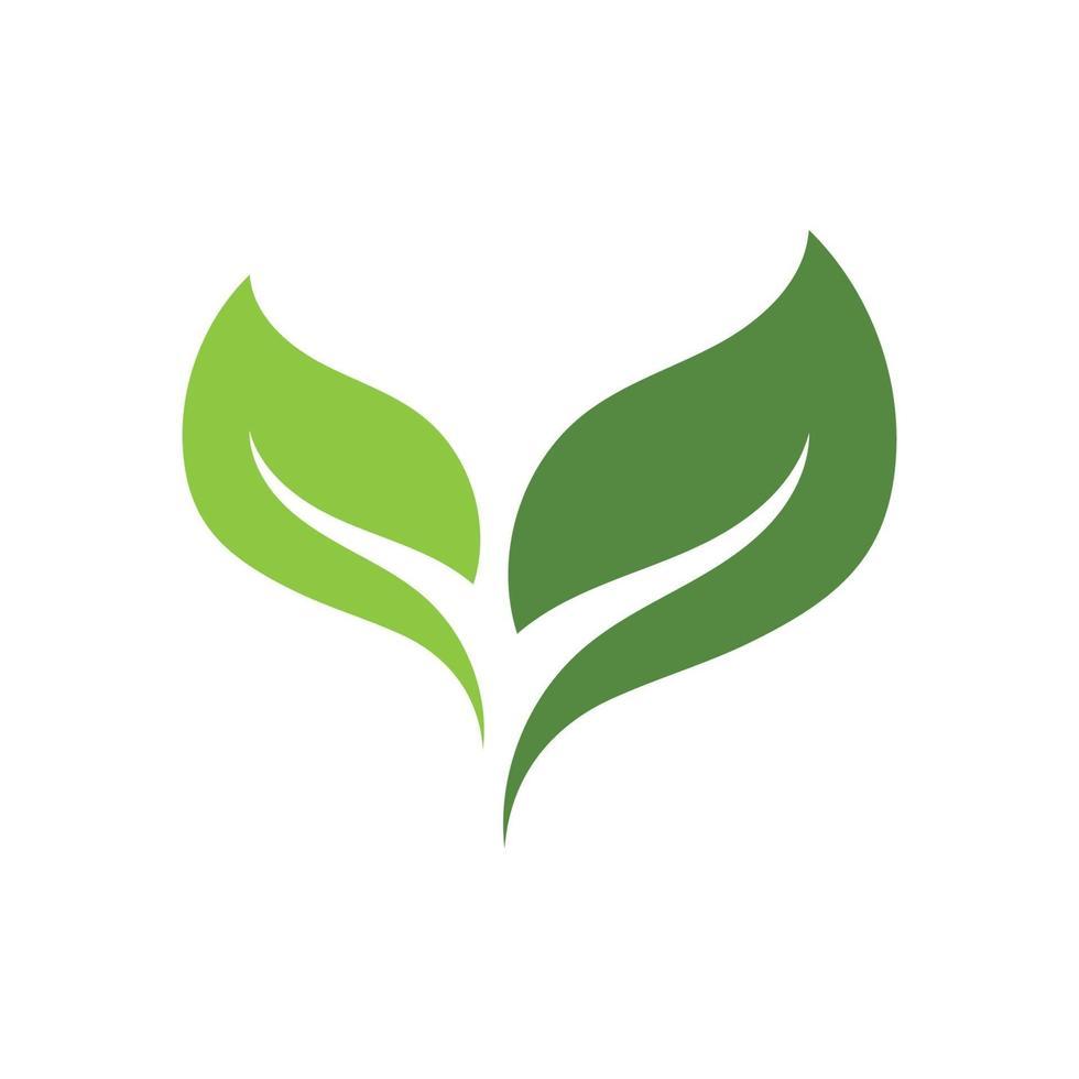 hoja verde ecología naturaleza logo elemento vector imagen