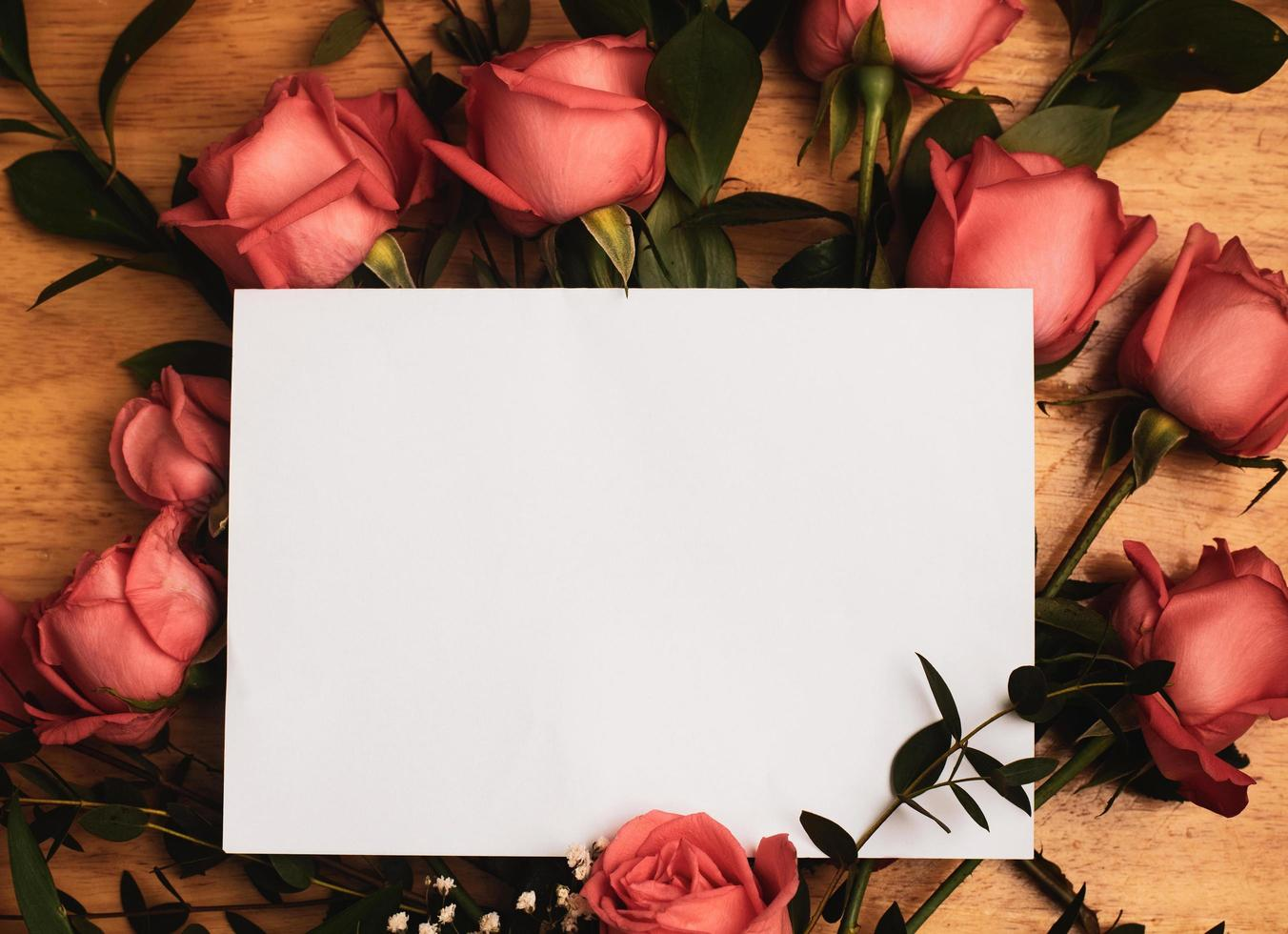 Empty card on roses photo