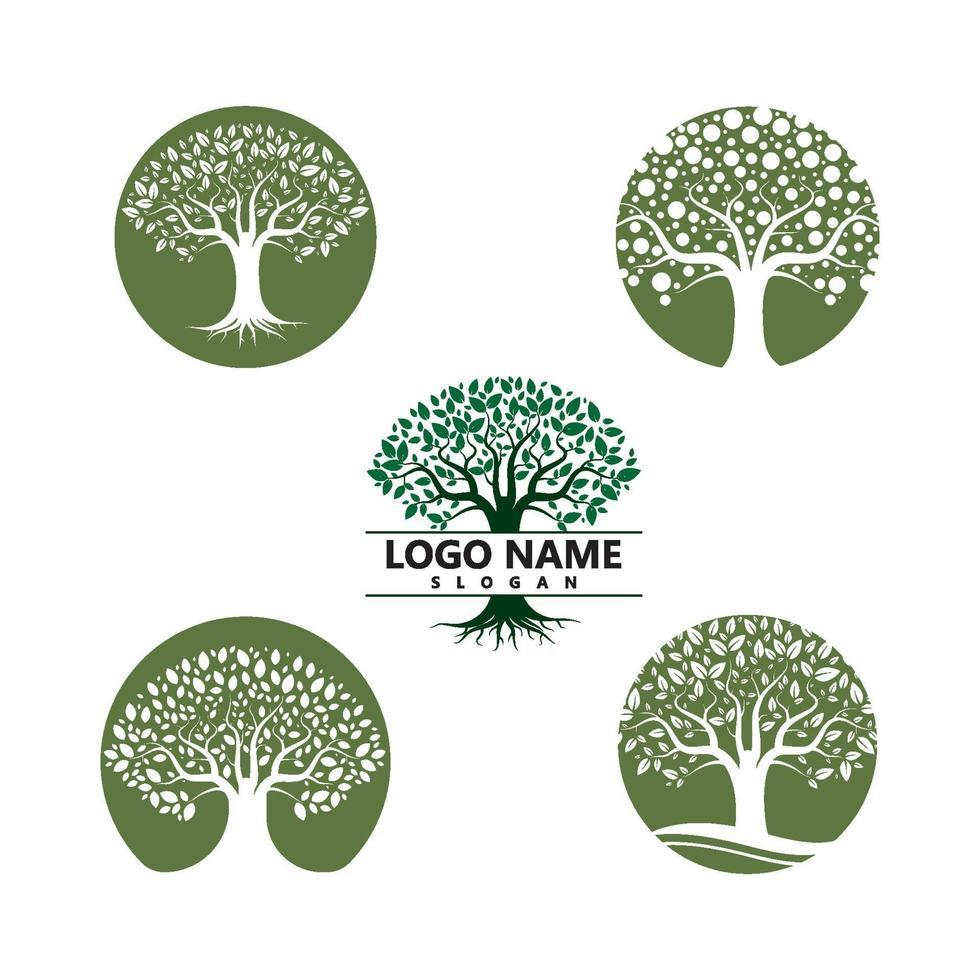 logotipos de la ecología de la hoja del árbol verde vector