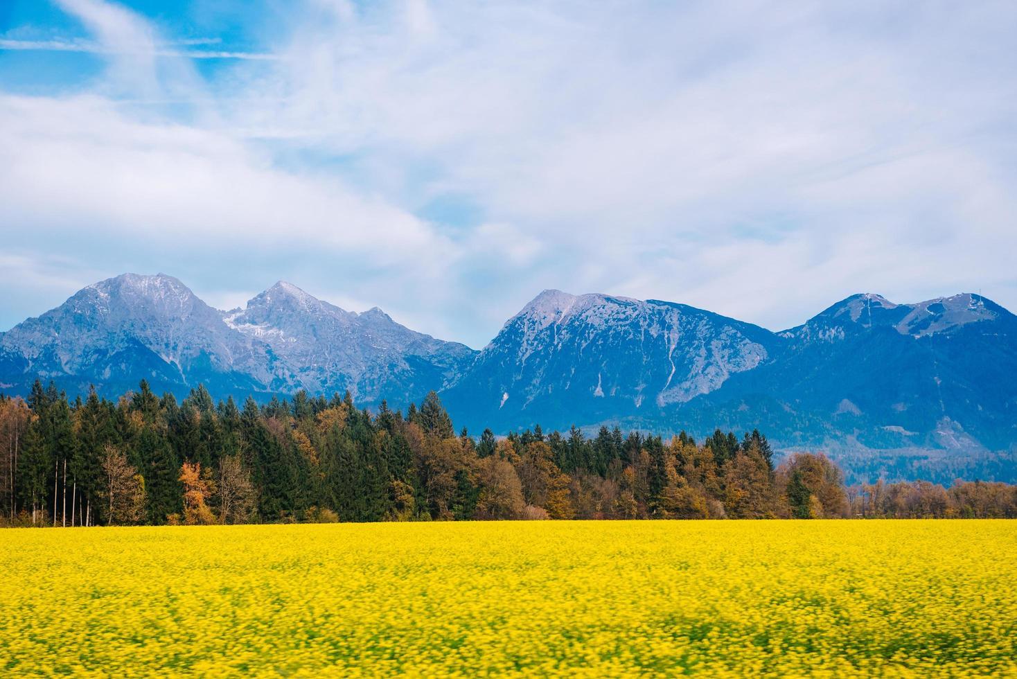 montañas de los alpes en eslovenia foto