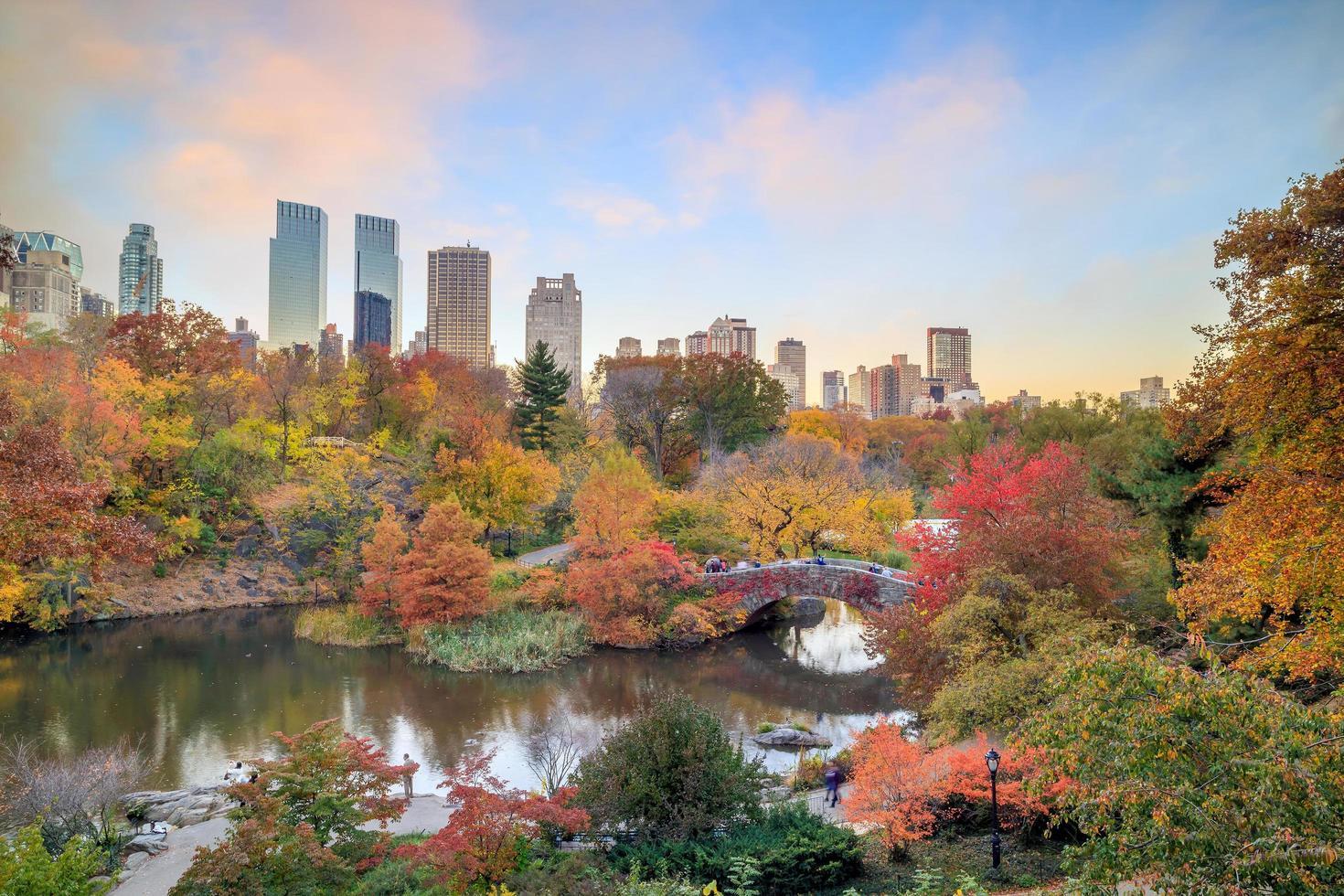 parque central en otoño foto