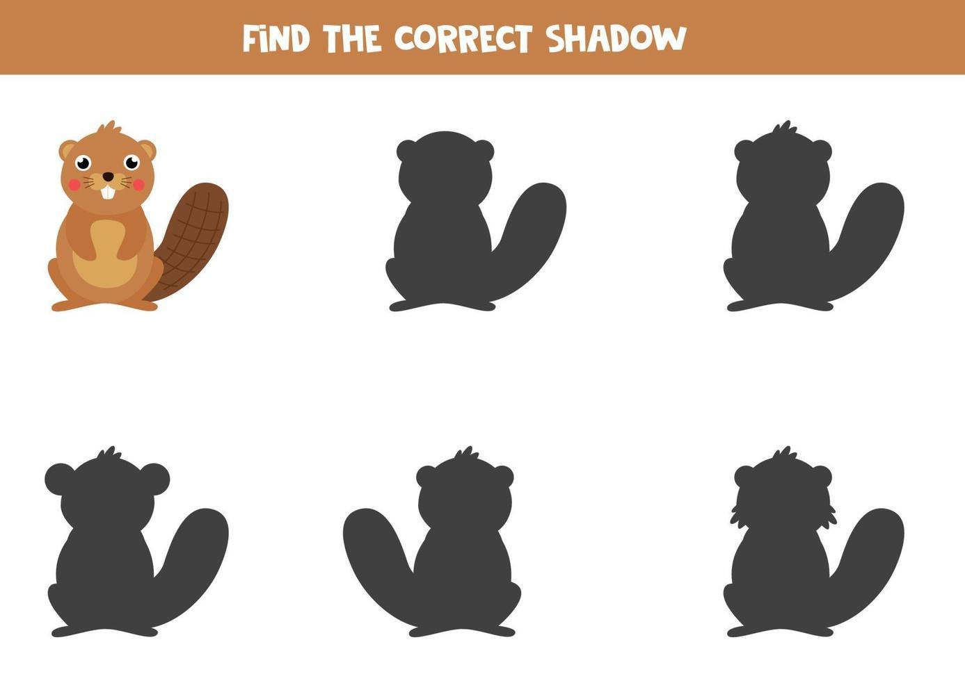 Find right shadow of cute cartoon beaver. vector