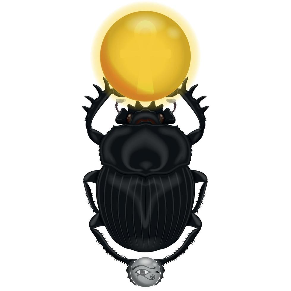 Design of a beetle with the sun and the moon vector
