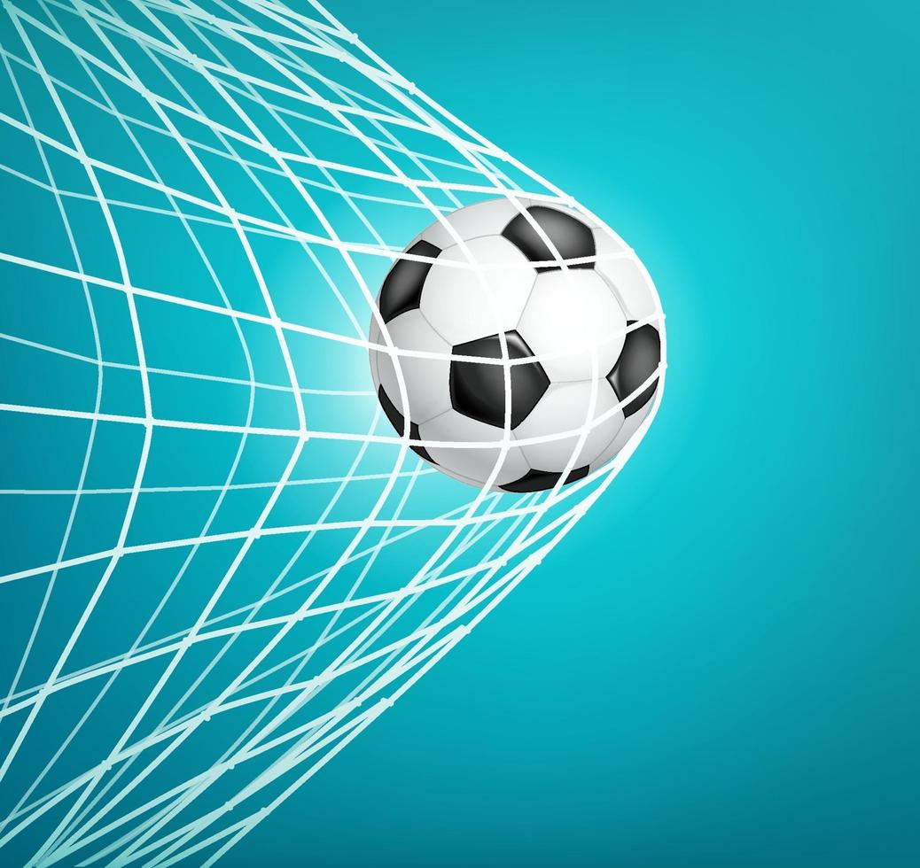 balón de fútbol en la red. meta. vector