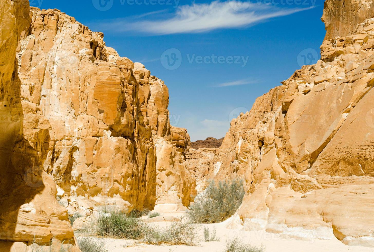 Valley in a rocky canyon photo