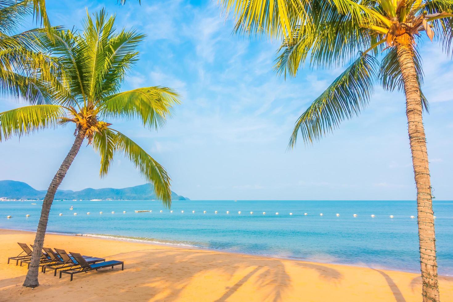 hermosa playa y mar con palmera foto