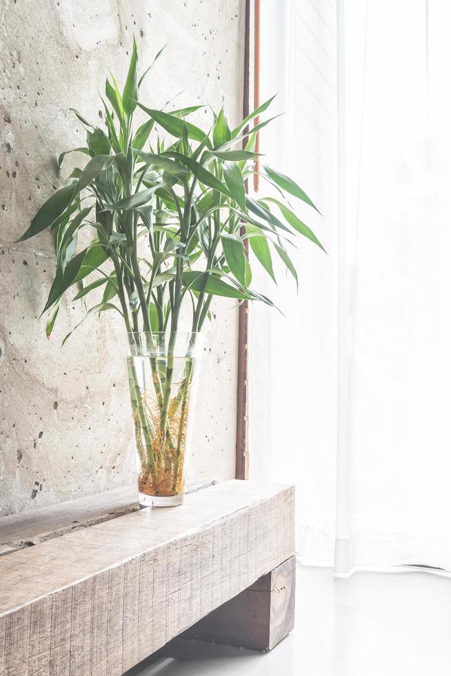 Decoración de plantas de jarrón con habitación vacía. foto