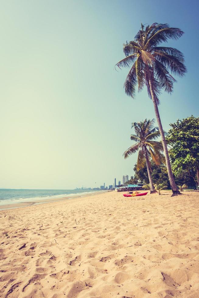 palmera en la playa foto