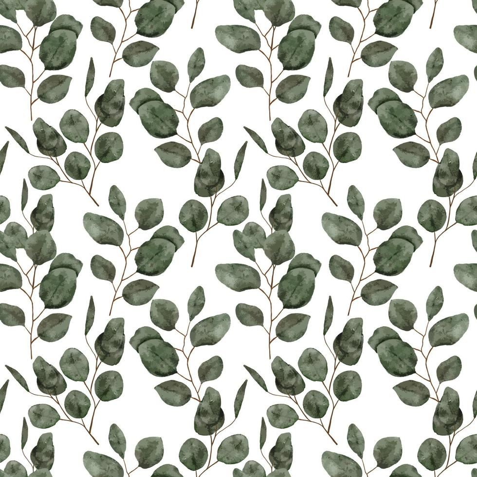 acuarela hoja de eucalipto de patrones sin fisuras vector