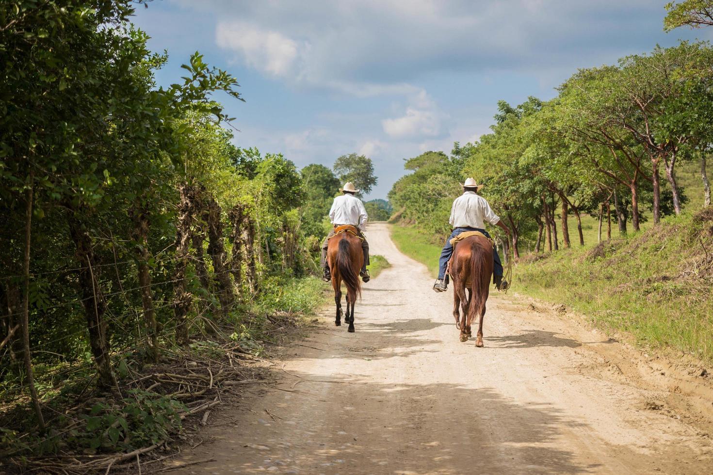 2016- dos vaqueros cabalgando en la carretera foto