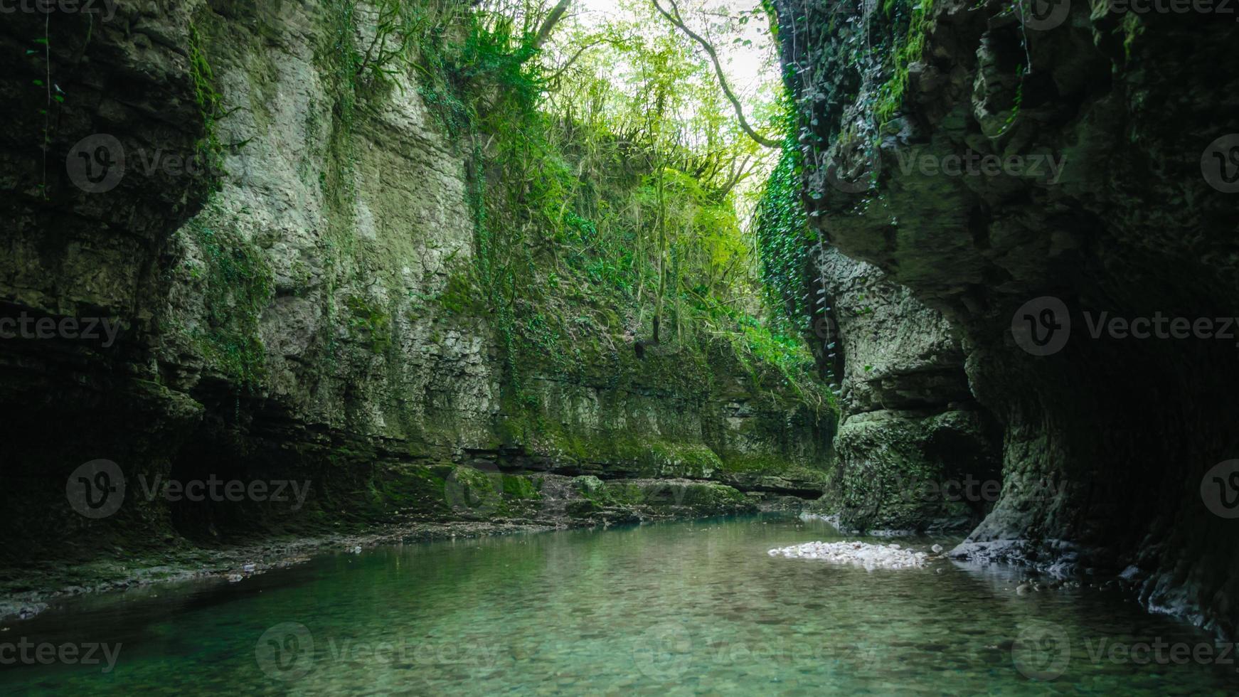río en las montañas con plantas verdes. foto