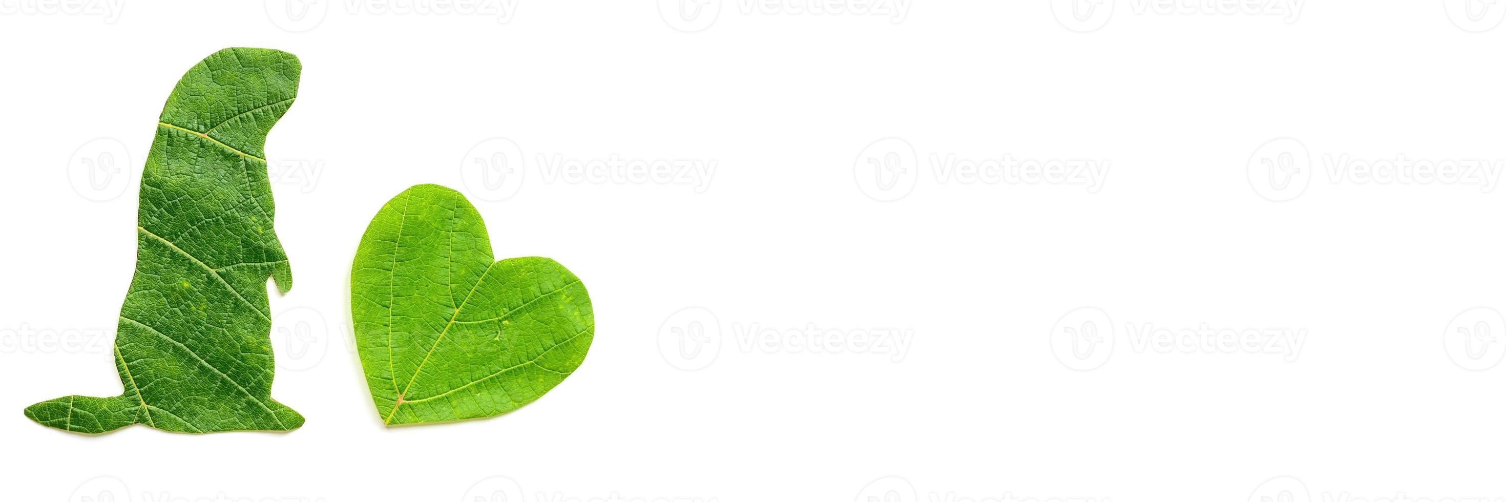 la silueta del animal se corta de follaje verde sobre un fondo blanco foto