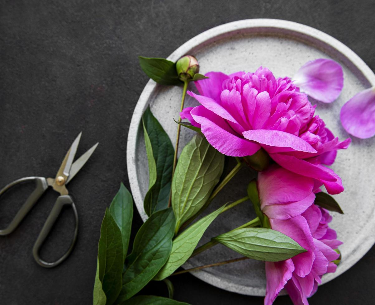 Flores de peonía sobre un fondo de hormigón negro foto
