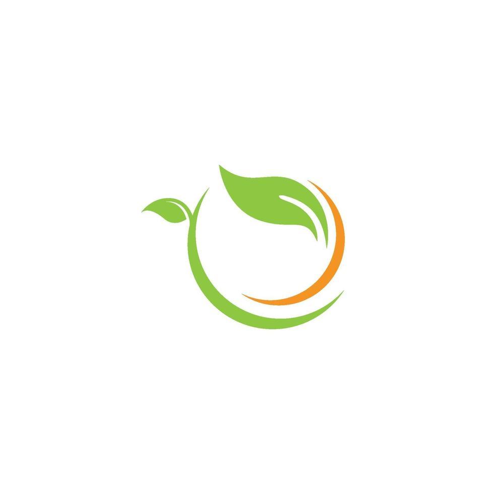 logotipos de hoja verde ecología naturaleza elemento vector icono