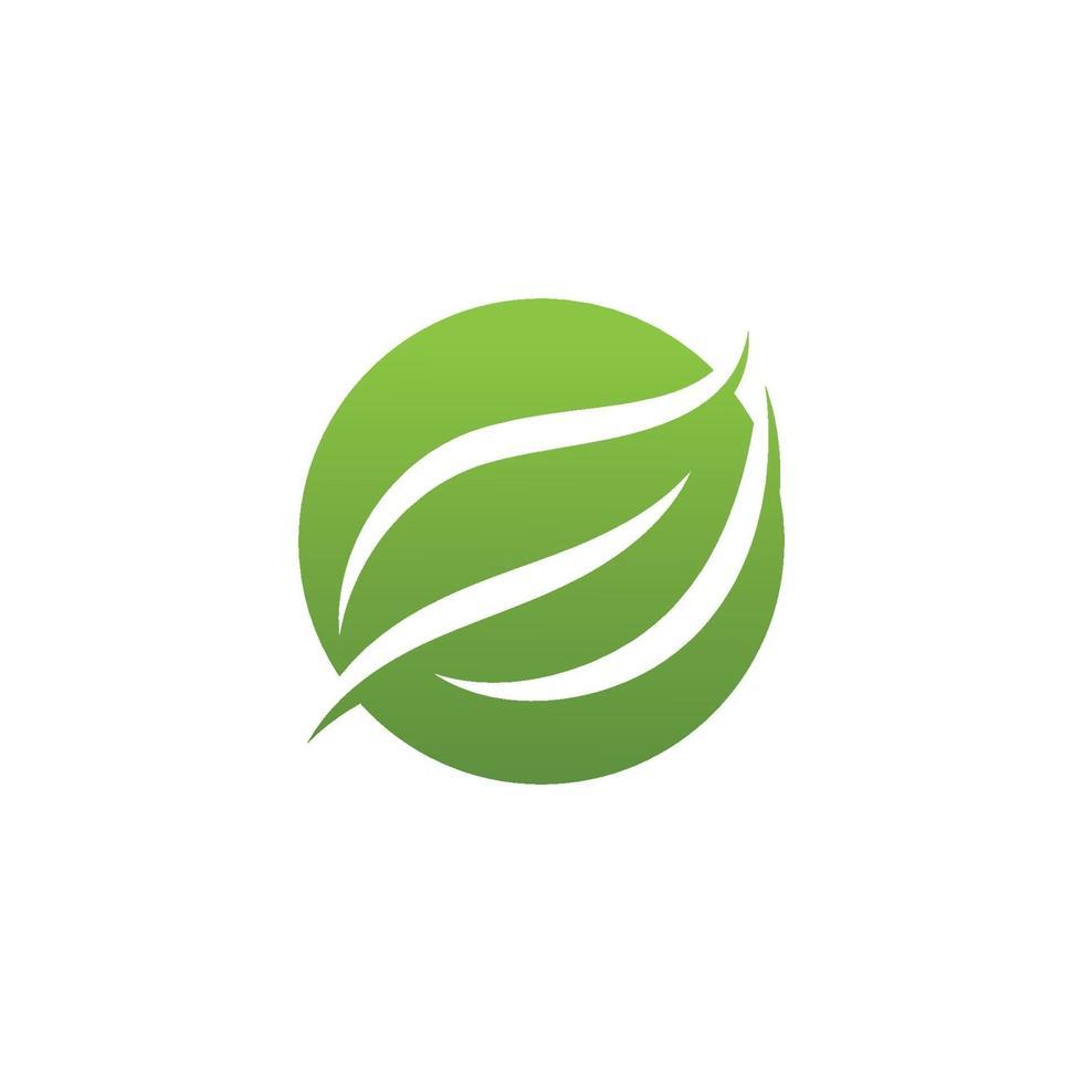 Icono de ecología, diseño de ilustraciones vectoriales de hoja verde vector