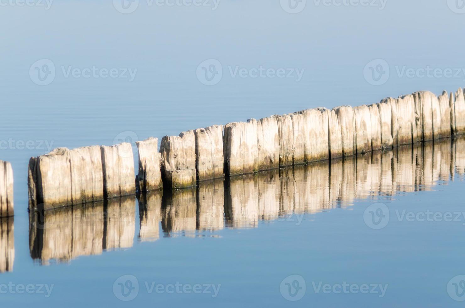 postes de madera en agua azul foto