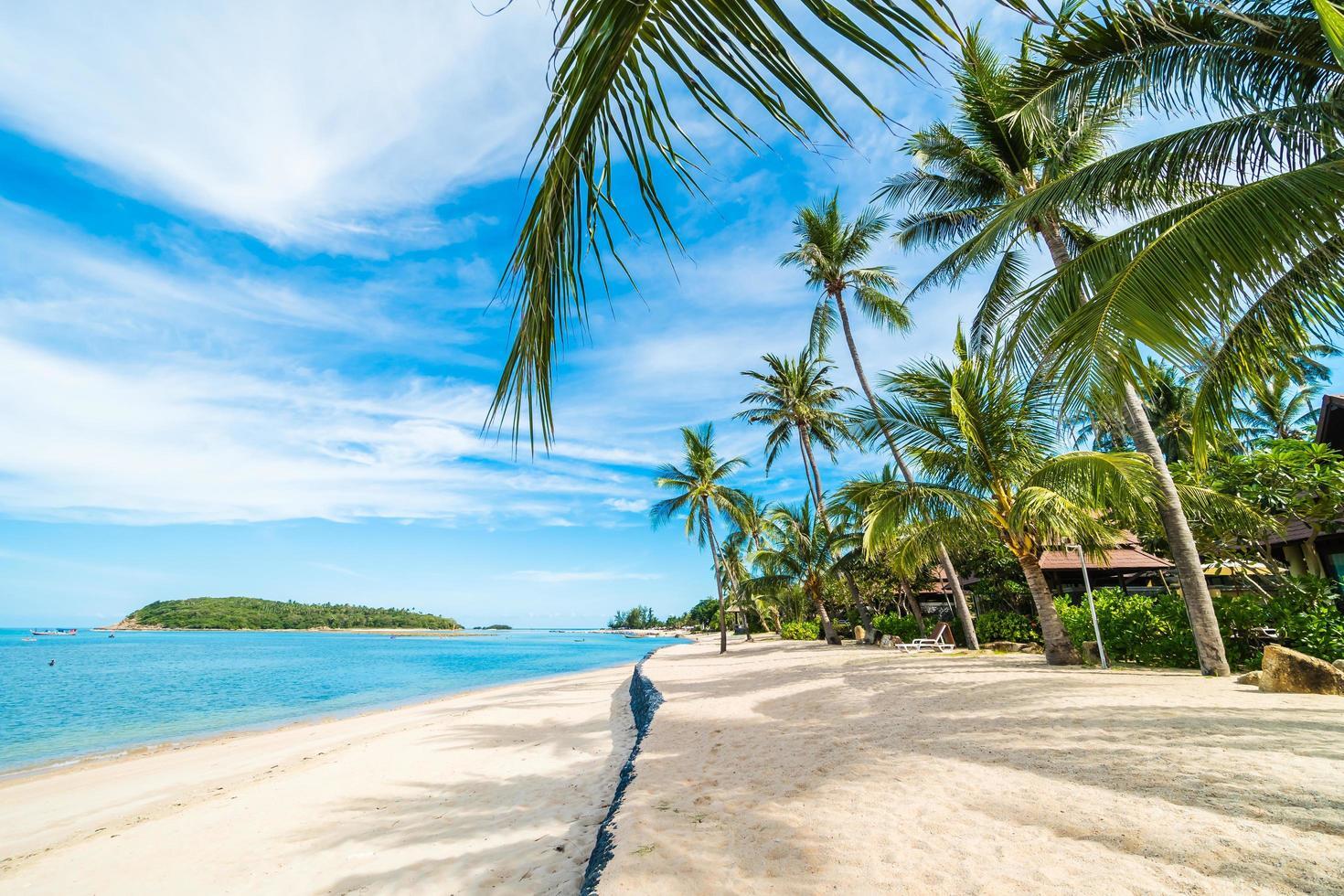 Hermosa playa tropical, mar y arena con palmeras de coco en el cielo azul y nubes blancas foto