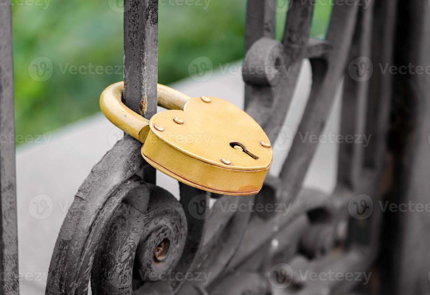 Gold padlock on iron gate photo
