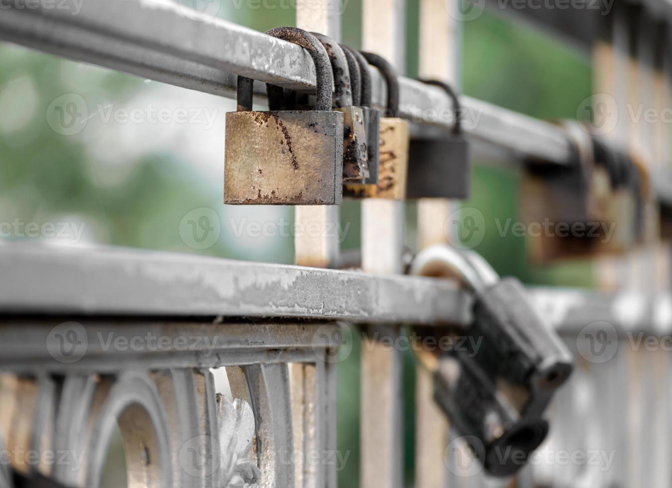 Padlocks on a gate photo