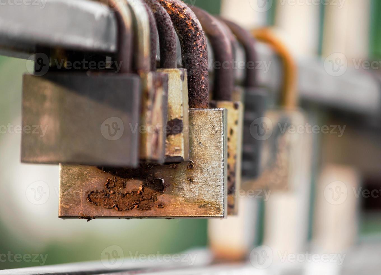 Rusty locks on a fence photo
