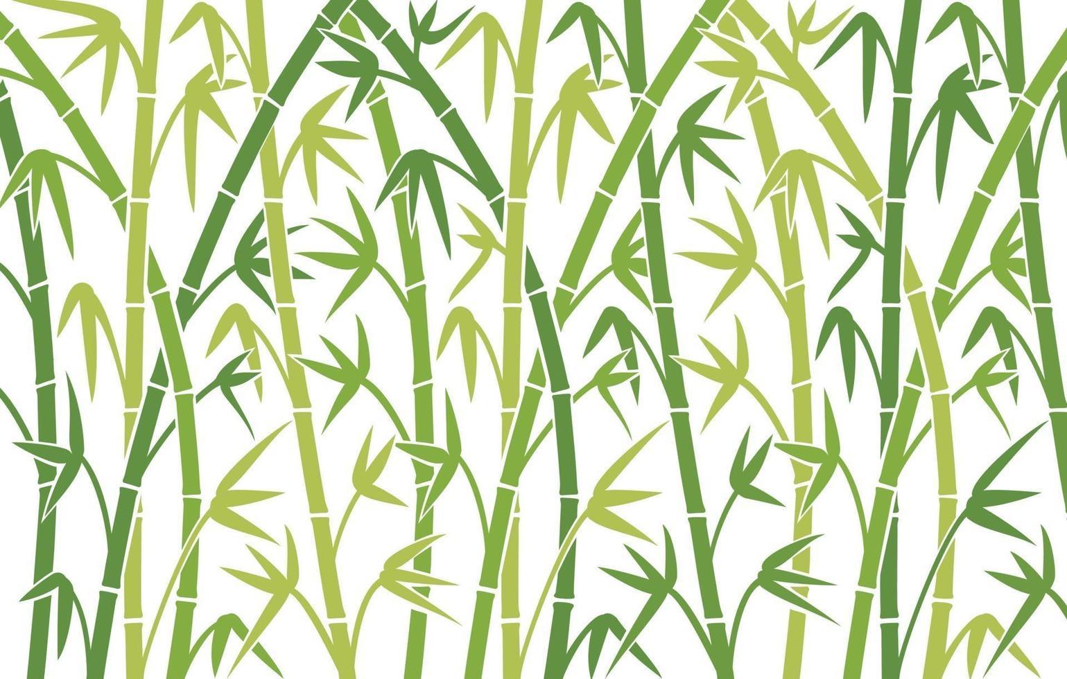 diseño de fondo de bambú vector