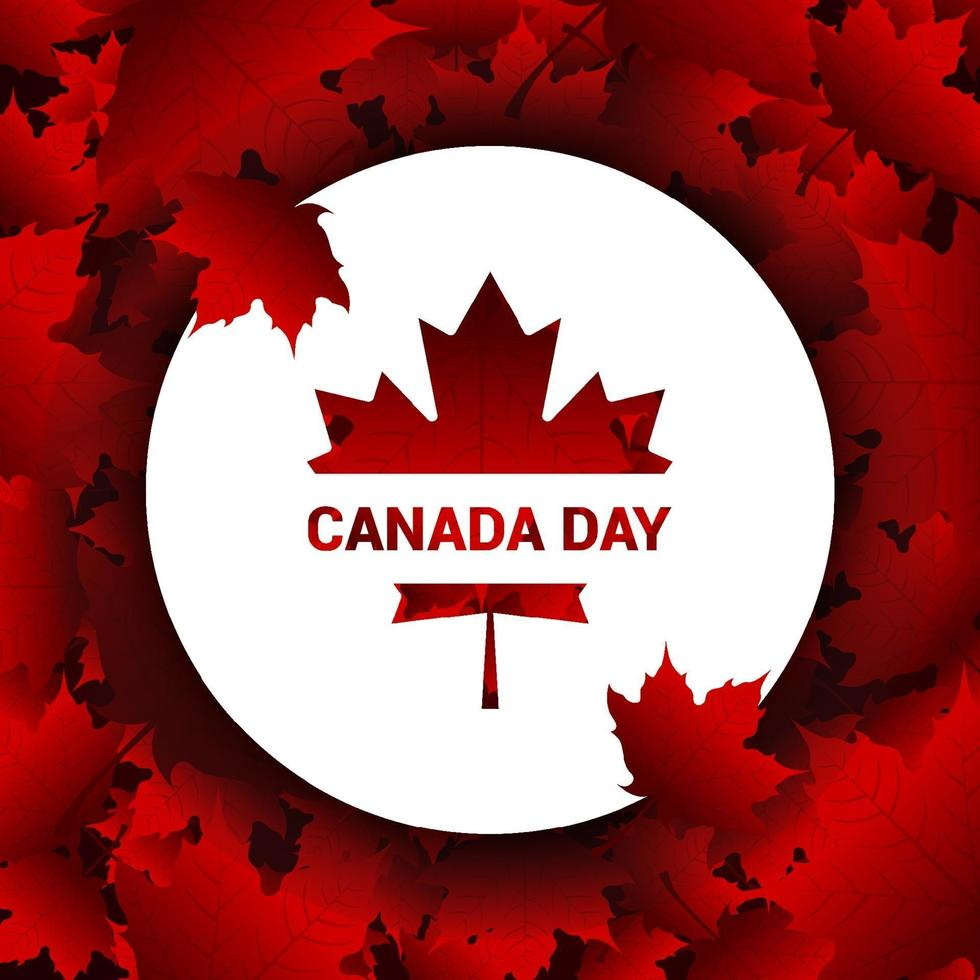 Canada Day Gradient Falling Maple Leaves Background Design vector