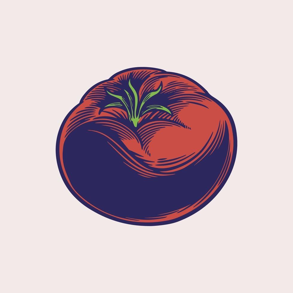 tomates boceto ilustración de estilo grabado. producto del mercado agrícola. bocetos retro aislados. vector vegetales decorativos en estilo antiguo de tinta. elemento de diseño dibujado a mano para etiqueta y cartel