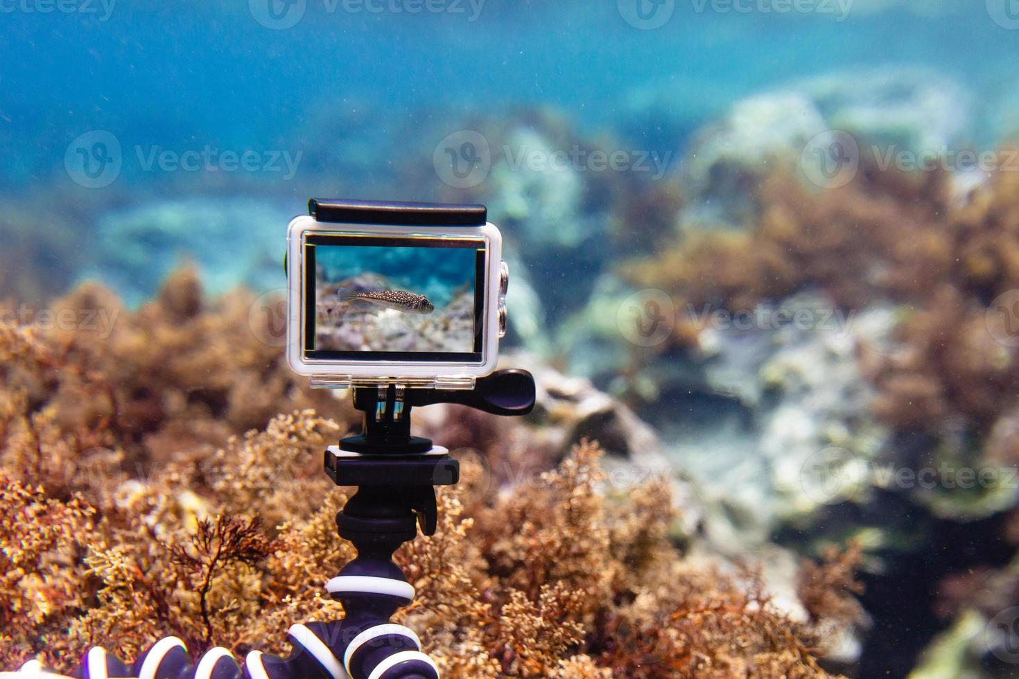 Using action-camera in waterproof box to make photos and video underwater