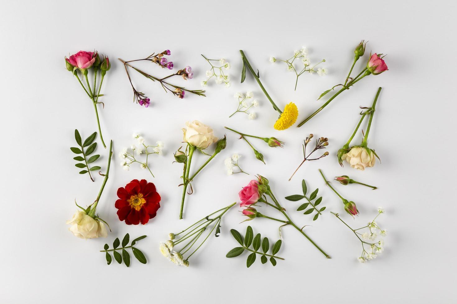 vista superior de flores en la mesa foto
