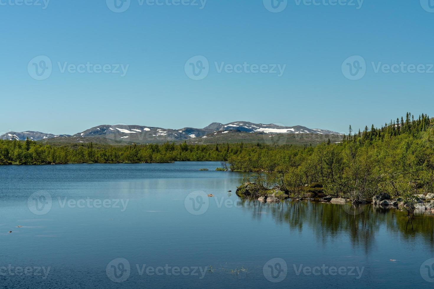 Tierras altas suecas bajo el sol de verano foto