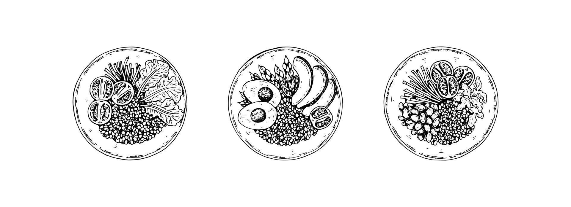 juego de cuenco dibujado a mano con cereales y ensalada. ilustración vectorial en estilo boceto vector
