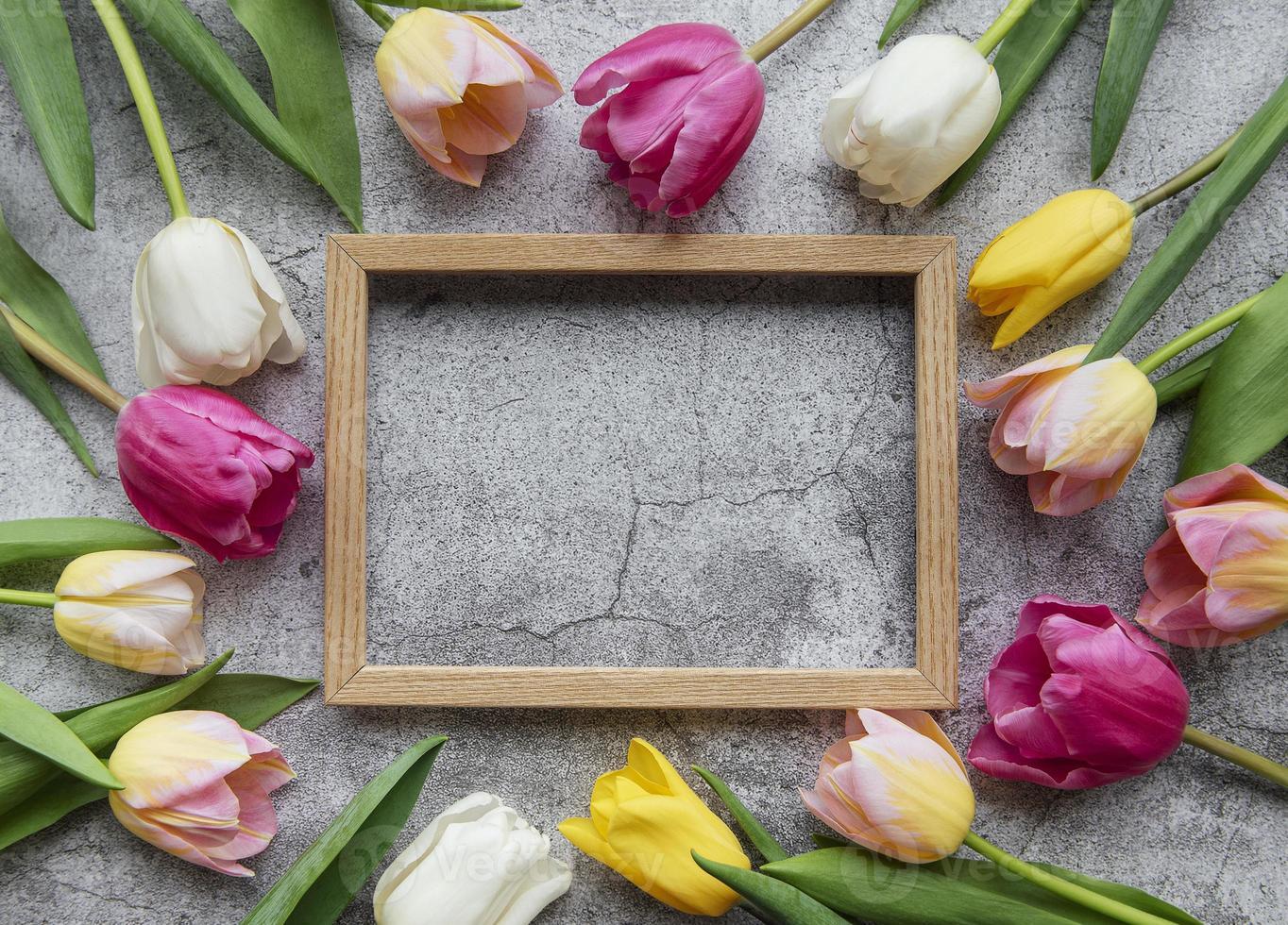 tulipanes de primavera sobre un fondo de hormigón foto