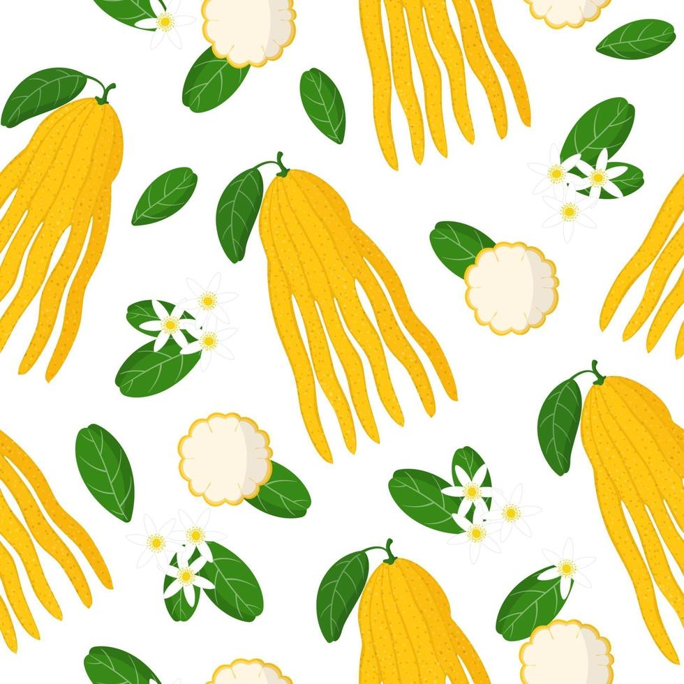 Vector cartoon seamless pattern with Citrus Buddha's hand exotic fruits, flowers and leafs on white background