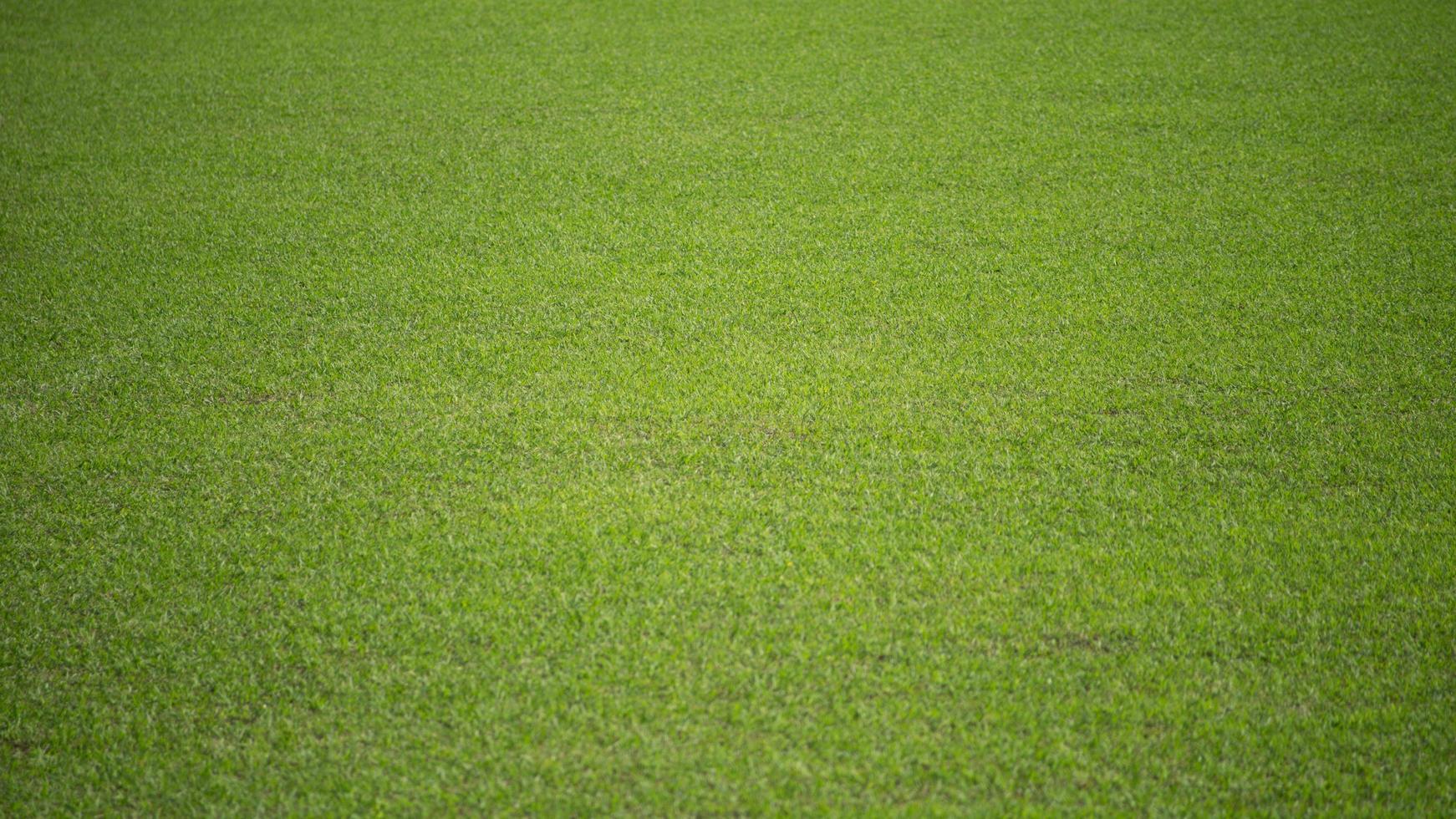 Fondo natural de un campo de fútbol verde de hierba. foto