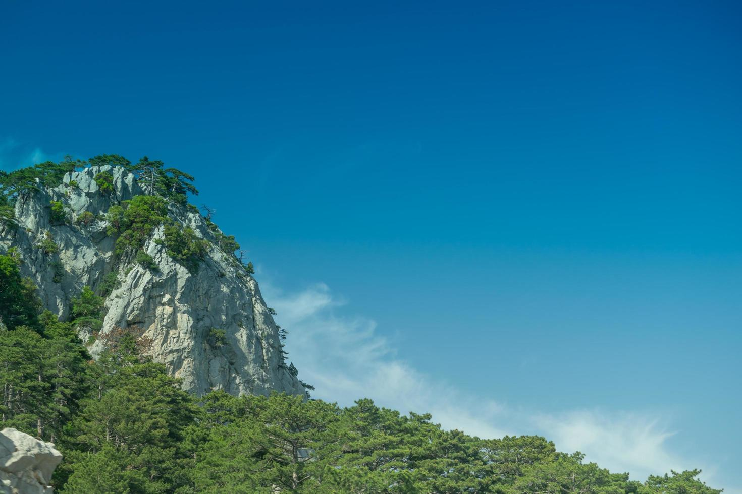 Mountain landscape with forests on blue sky background photo