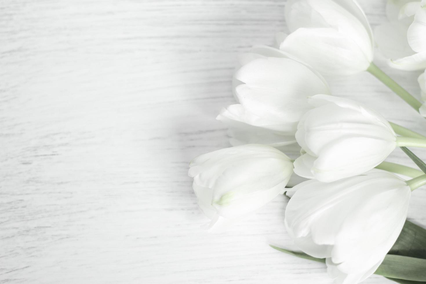Flores de tulipanes en madera blanca con espacio de copia foto