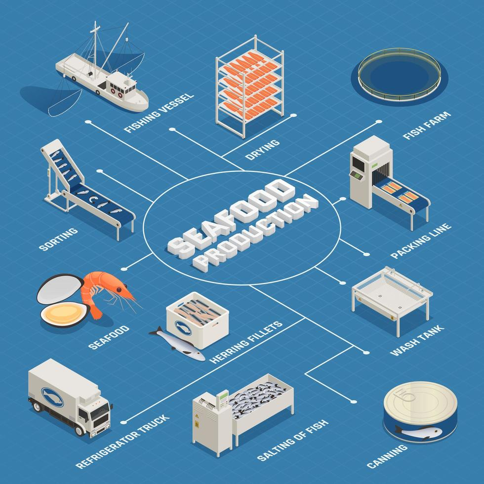 Seafood Production Process Flowchart Vector Illustration