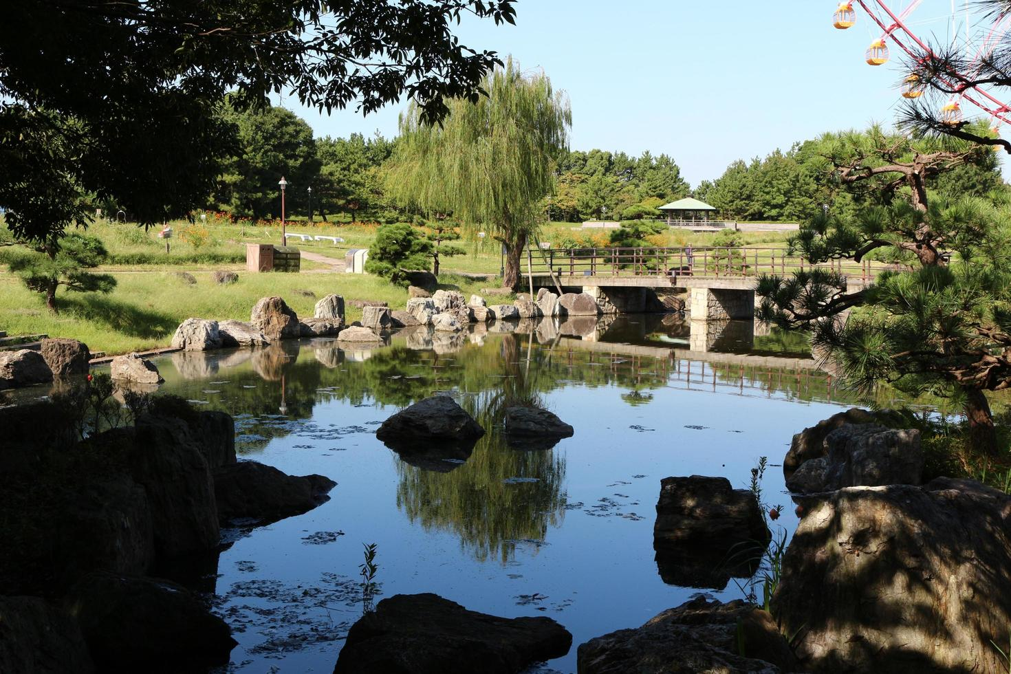 Japanese style garden at the park photo